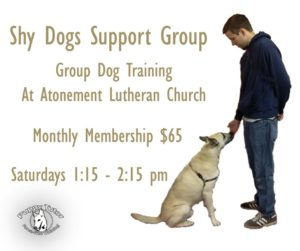 Shy Dogs Support Group